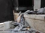 הרס בהר הזיתים; צילום ארכיון בחדרי חרדים