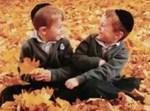 האחים גרוס