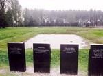קבר אחים במחנה השמדה בפולין