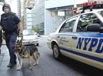משטרת ניו יורק. צילום: אילוסטרציה