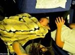 התינוק בן יומו בדרך לאומן. צילום: יוסי גולדשמיט