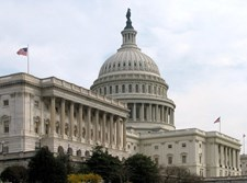מבנה הסנאט