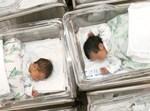 תינוקות, צילום: אלי אטיאס