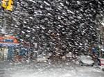 צילום: ליפא שטאובר