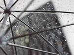 מטריה רטובה
