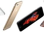 """אייפון 6S / צילום: יח""""צ"""