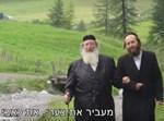 הרבי מספינקא בנאות דשא בהרי שוויץ