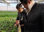 הרבי משאץ מהכשרות עם עובד סיני