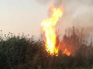 שריפה מבלון תבערה