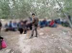 מעצר פלסטינים שוהים בלתי חוקיים