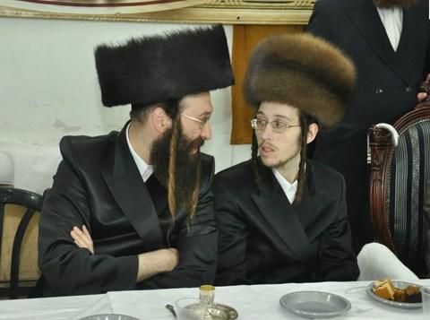 יהודה פרקוביץ