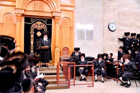 """הכנס""""ת לביהמ""""ד סערט ויז'ניץ בחיפה"""