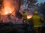 לוחמי אש בכיבוי שריפת יער ליד קיבוץ הראל
