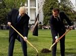 טראמפ ומקרון בנטיעת עץ בחצר הבית הלבן