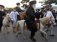 זקני חסידי צאנז רכובים על סוסים בדרך לחתונה