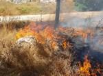 שריפת חורש ברמת אשכול בירושלים