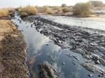 פריצת הנפט והזיהום החמור בשמורת עברונה