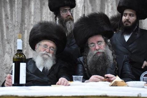 חתונה בחצרות מחנובקא בעלזא, סאסוב, לעלוב וספינקא