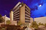 הדמיית המלון
