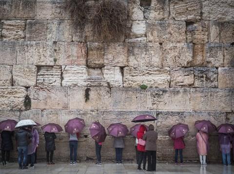 תיירים סינים בכותל. צילום: הדס פרוש, פלאש 90