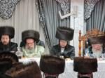 שבע ברכות בנדבורנא חיפה