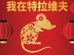 שנת העכברוש הסינית