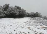 שלג בהר מירון