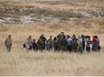 """חברי הארגון בעימות עם צה""""ל בגוש עציון"""