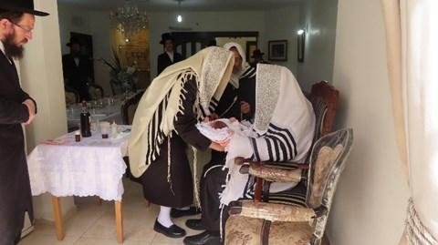 ברית לנכד הרבי ממודז'יץ בסלון ביתו