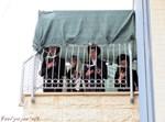 תפילת מרפסות בחיפה
