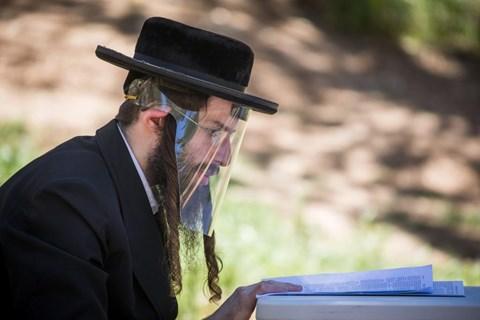 לומדים ביער בירושלים