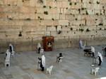 תפילה בכותל המערבי בעידן הקורונה
