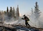 שריפה ביער ירושלים