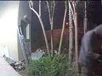 פלסטיני ניסה להתפרץ לבית בהוד השרון