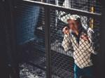 אסיר בכלא. אילוסטרציה