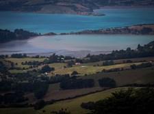 נוף כפרי בניו זילנד