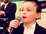 ילד הפלא מאיר רוזינגר