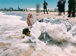 שחרור צבת הים