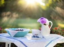 קנקן על שולחן בחצר