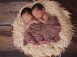 זוג תאומים