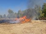 שריפה בעוטף עזה כתוצאה מבלון תבערה