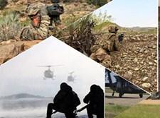 """צבא ארה""""ב, אילוסטרציה"""