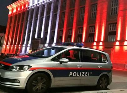 משטרה בוינה