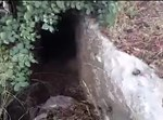 המערה שמצא כרמלי