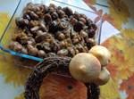 פטריות ערמונים ובצל בטעם משובח