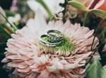 מחתנים בכבוד