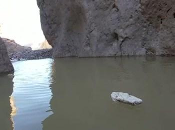 הבריכה במדבר יהודה