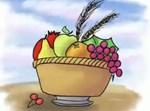 סלסלת פירות מצויירת