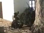 השוד בכפר סבא