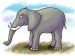 ציור של פיל